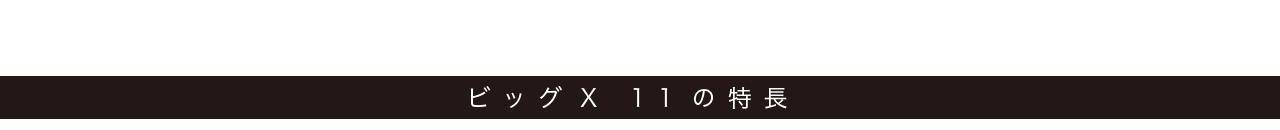 ビッグX 11の特長